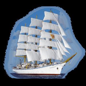 Капитан корабля не боится сложностей на пути к своей цели